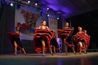 Gala Dansului 2017 - 28