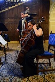 Concert Orchestra Liszt Ferenc 5
