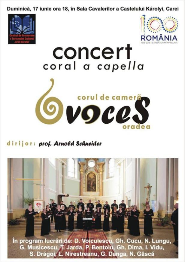 Afis Corul voces in Oradea press