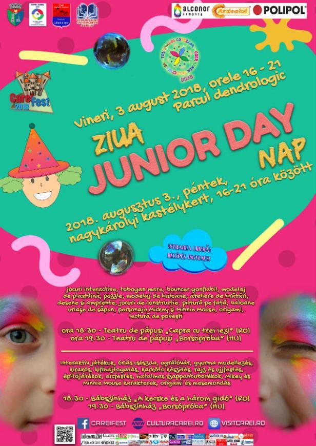 Afis Junior Day v