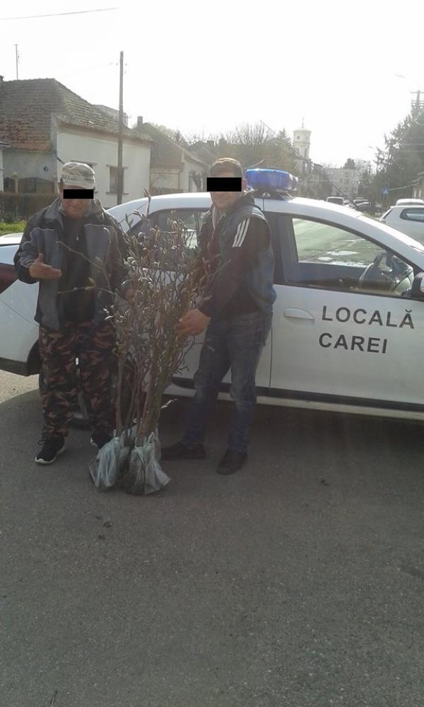 puieti politia locala
