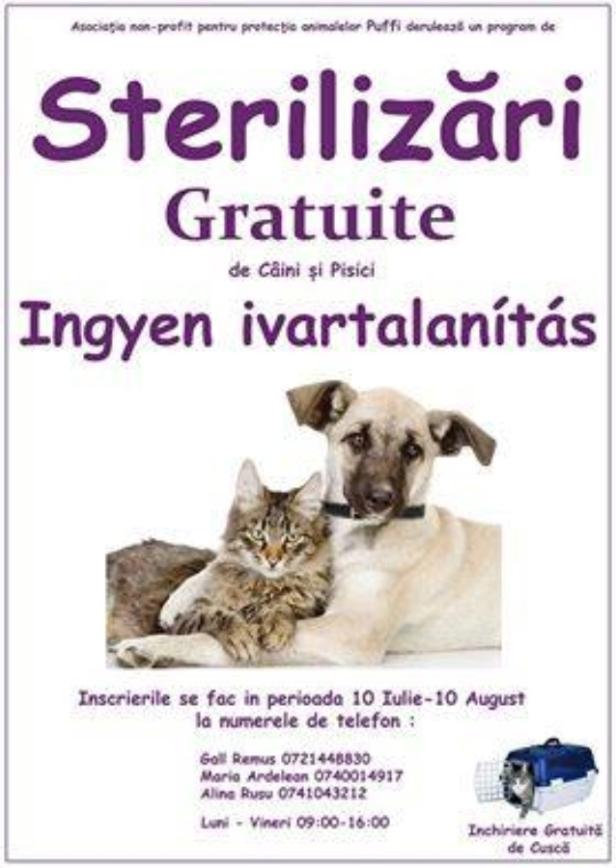 sterilizari