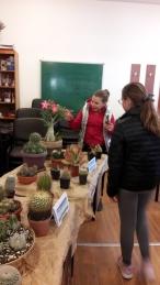 cactusi3
