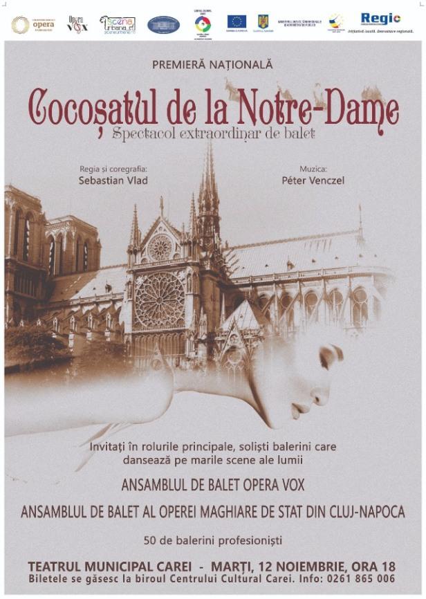 Cocosatul de la Notre Dame - Carei RO (1)