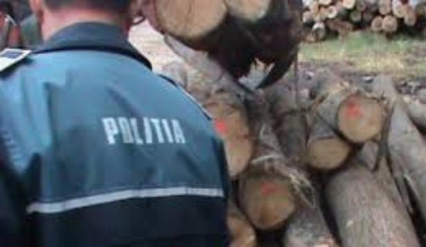 politie lemne