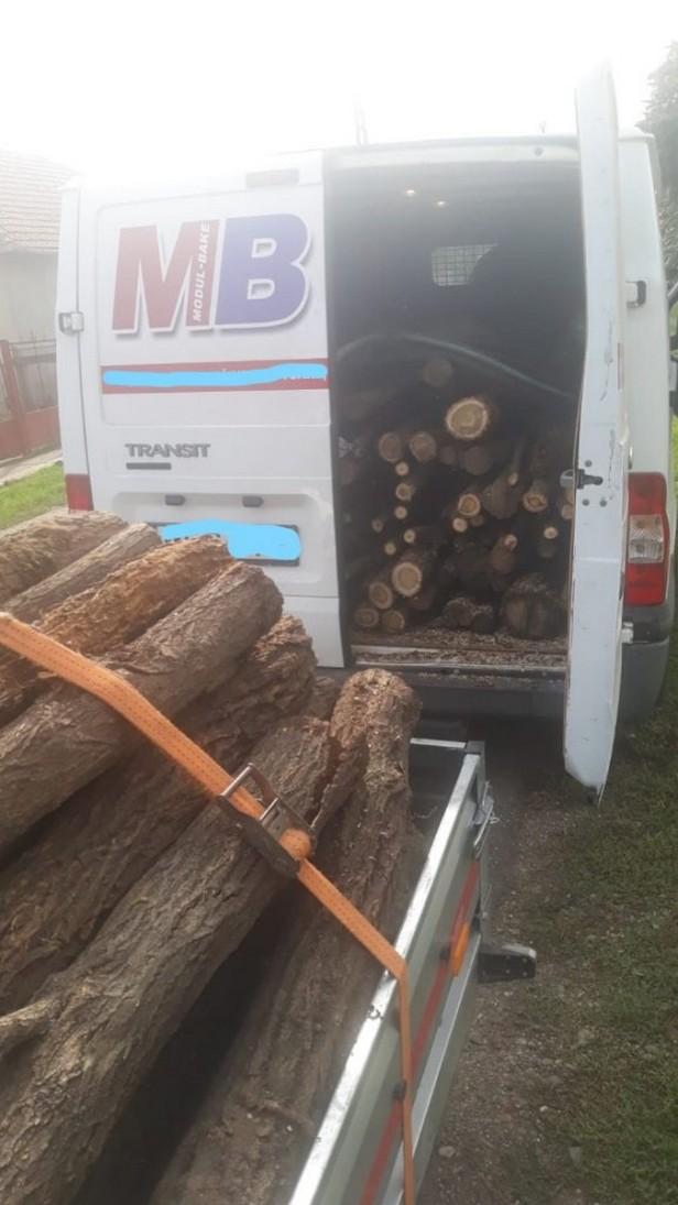 lemn fara acte1