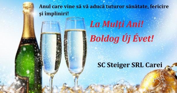 felicitare steiger (1)