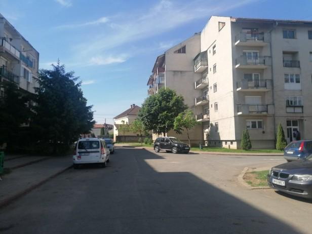 cartier mv2